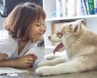 kobieta-patrzy-na-psa