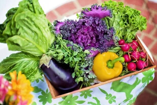 warzywa z przydomowego ogródka